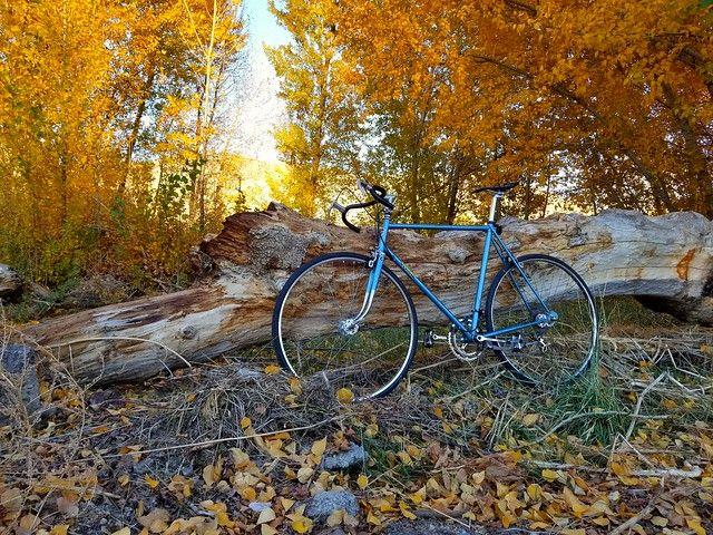 Cykelturism i Uppsala
