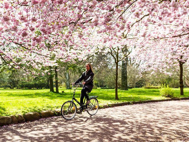 Cykelstrategi Orust
